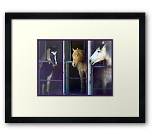 What Do You Say We Break Out Of Here? Framed Print