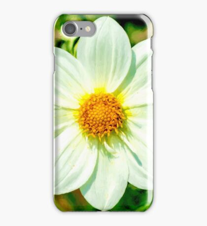 Perfect Petals v2 iPhone Case/Skin