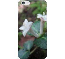 Unidentified iPhone Case/Skin