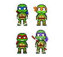 Teenage Mutant Ninja Turtles 2012 Mini Pixels Photographic Print