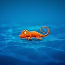 Gecko by vladstudio