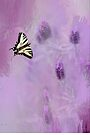 French Lavender by Diane Schuster