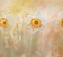 Delightful Daffodils by Diane Schuster