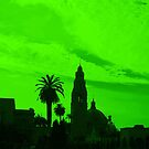 Going Green in San Diego! by Heather Friedman