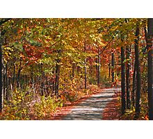 Back Country Arkansas Road Photographic Print
