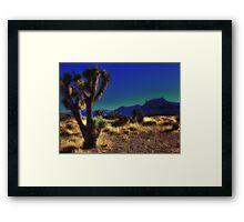 Prickly Patch Framed Print