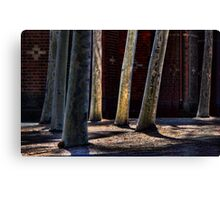 Urban Forest Canvas Print