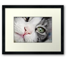 Nose... Framed Print