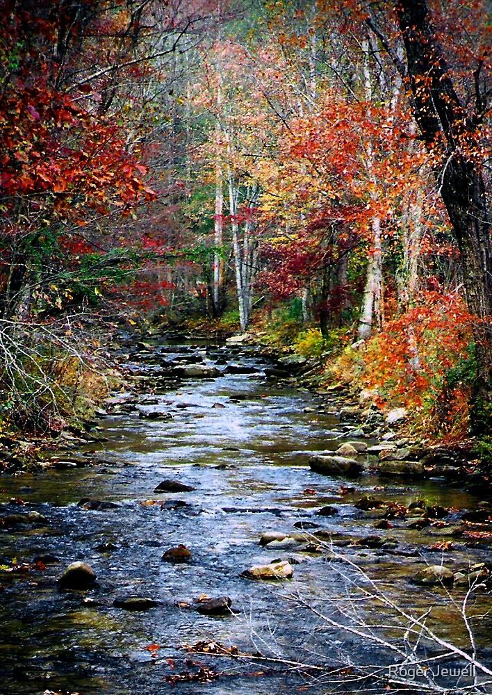 Little Eastatoe River by Roger Jewell