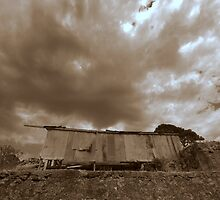 Morialta Barns- Shearing Shed by Ben Loveday