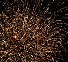 Sparks by Carol Field