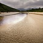 Tidal River - Wilsons Promontory by Hans Kawitzki