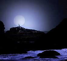 Midnight Fishing (View Large Please!) by Diane Schuster
