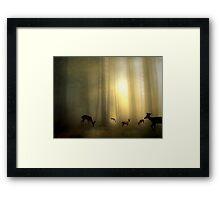 The Magic Of Sunrise Framed Print