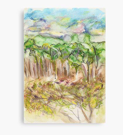 North Leura Canvas Print