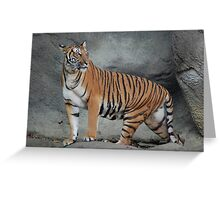 Momma on Watch Greeting Card