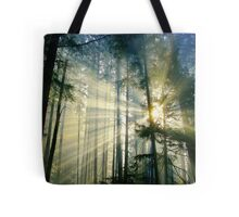 Behold The Light! Tote Bag