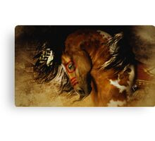 Spirit Horse Canvas Print