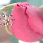 Sweet Love Rose by judygal