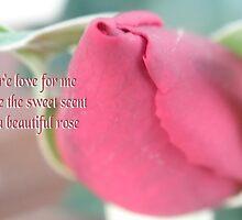 Sweet Love Rose by judygal