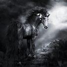 Moonshadow by Shanina Conway
