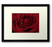 Love Hurts! - Rose Framed Print
