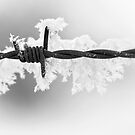 Barbed Ice by Steve Leath