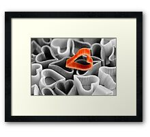 Sometimes You Have to Show Your Colours Framed Print