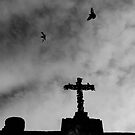 Cross and Birds by blu370n3