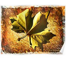 When Autumn Leaves Start to Fall Poster