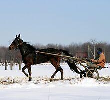Racing Into Spring by Geno Rugh