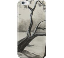 Suwannee River in Charcoal iPhone Case/Skin