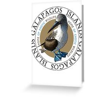 Galapagos Islands Blue footed Booby Greeting Card