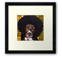Psychedelic Pitbull Framed Print