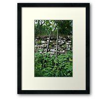 Garden Ladder  Framed Print