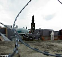 Barbed wire by cfphotos