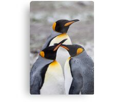 Trio of Penguins Metal Print