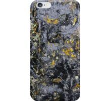 Obsidian and Lichen iPhone Case/Skin