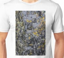 Obsidian and Lichen Unisex T-Shirt