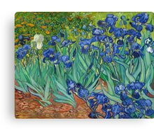 Vincent Van Gogh irisis Canvas Print