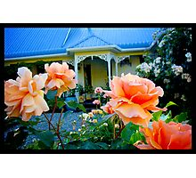 Naik Michel Photography - Hortensia House Garden Orange Flower Roses 001 Photographic Print