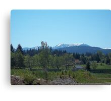 Olympic Moutains, Sequim, WA Canvas Print