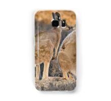Kissing Kangaroos Samsung Galaxy Case/Skin