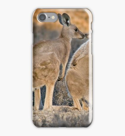 Kissing Kangaroos iPhone Case/Skin