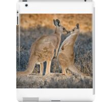 Kissing Kangaroos iPad Case/Skin