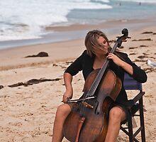 Violoncello  by David Petranker