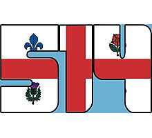 514 - Montreal Flag Photographic Print