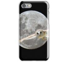 Flight of Fantasy iPhone Case/Skin
