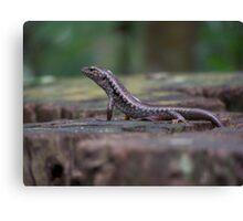 Lizard on a Stump Canvas Print