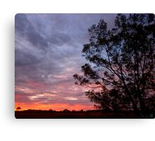 Pinkish Hour Canvas Print